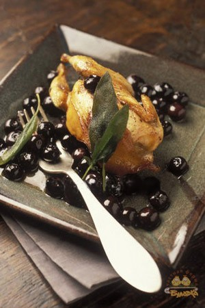 Quail-under-blueberries.jpg
